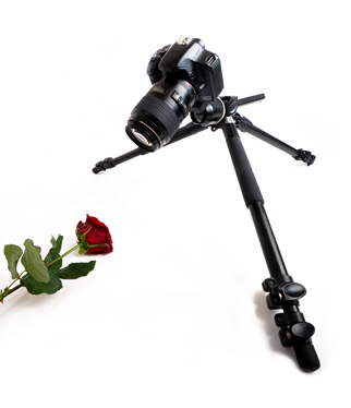 Macro photography tripod