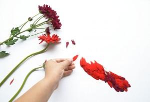 red-hong-yi-flower-bird-series-8-600x410