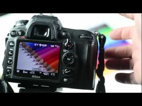 Macro Photography Technique – Focusing With Live View