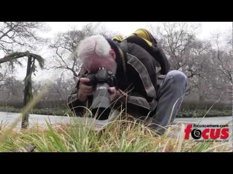 Tips from a Veteran Macro Photographer