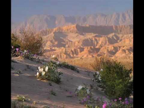 9 Tips for Shooting Dazzling Landscape Photographs
