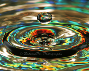 Simple Water Drop Photography 1