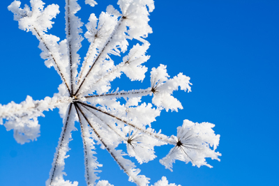 how to photograph snow landscapes